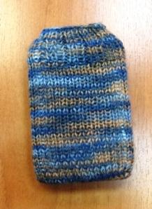 Palm sock 1