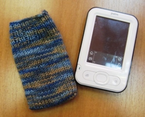 Palm sock 3
