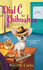 Dial C chihuahua