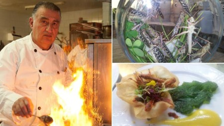 Chef Moshe Basson and one of his locust creations